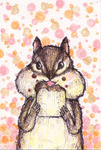 「squirrel eating bread」