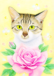 「Rose and cat」