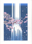 「Cherry blossoms bloom at the waterfall (」