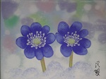 「fantastic flower hepatica」