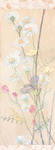 「spring flowers .hanging scroll」