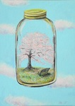 「The cherry tree spring bottle」