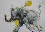 「An elephant Baby with the yellow ball」