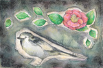 「camellia and white wagtail」