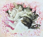「Cats sleeping in the cherry blossoms」
