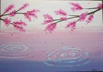 「Cherry blossoms on the water」