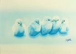 「Blue Chicks」