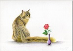 「Cat And Rose」